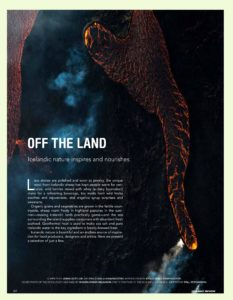 FUZZY ICELAND REVIEWmade_in_iceland_ir_5_2016_a_vef-page-002