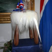 Nýsköpunarverðlaun forseta Íslands